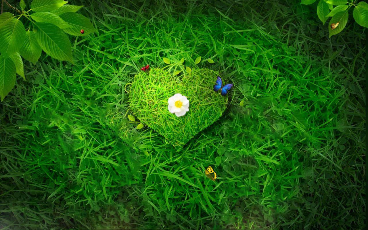 9995_digital_heart_green3.jpg