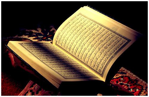 Hafidz al qur'an