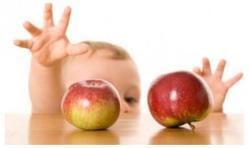 Perkembangan Bayi Usia 1 tahun